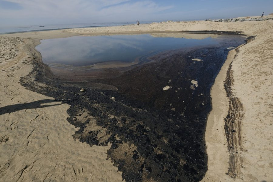 Oil Leak Causes Ecological Disaster